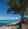 biminischen Inseln