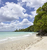 Lifou Insel